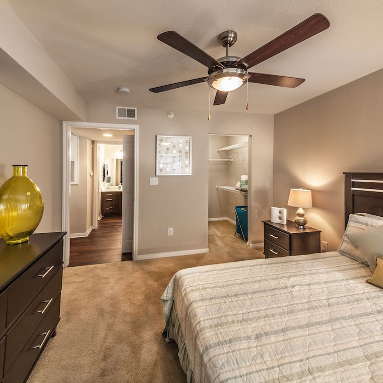 large bedroom with dark wood furnishings, walk-in closet and view of bathroom